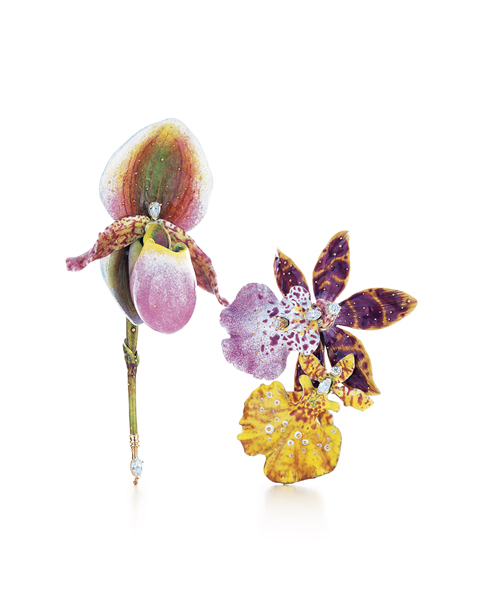 Tiffany-Orchid-Brooc_637(1)