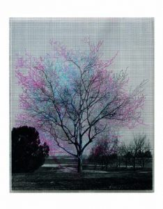 """""""Numbers And Trees X #4, Red Violet January"""" by Charles Gaines (1991)/Courtesy of OCMA and the artist"""