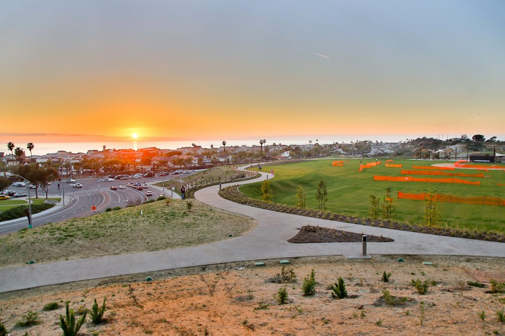 NBM_34_Buzz_Sunset Ridge Park_By Jody Tiongco-1